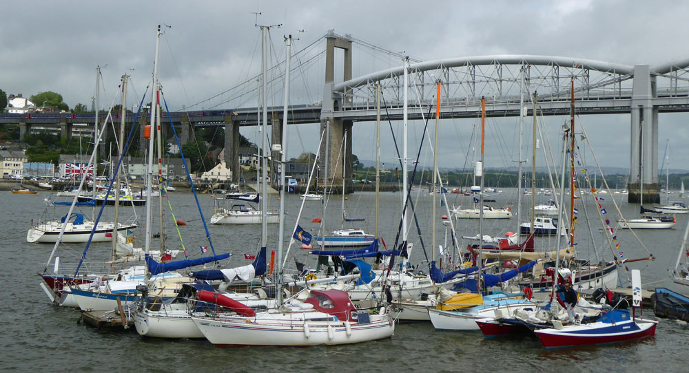 small sailboats in the Jester Challenge congregate on the Tamar River Sailing Club's pontoon