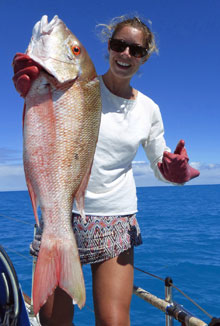 A Red Snapper caught on a trolling line from a sailboat