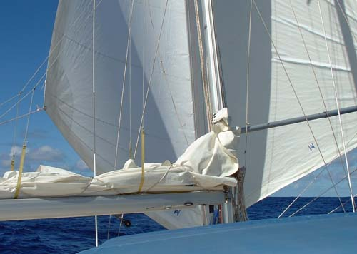 trin headsail rig for tradewind sailing