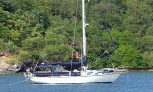 Cape Dory 36 sailboat for sale