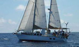 Blowin' Bubbles, 45 ft Dufour CT12000 Pilothouse Ketch for sale